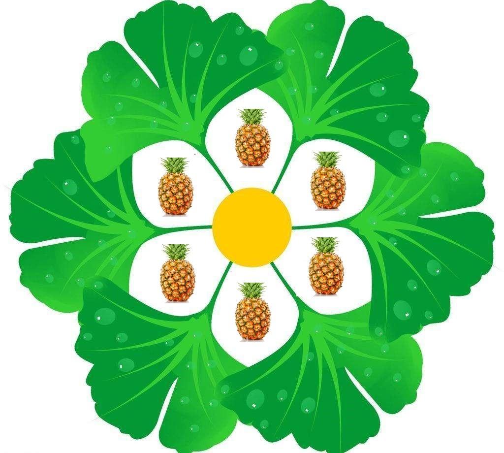 马可菠萝微信小程序
